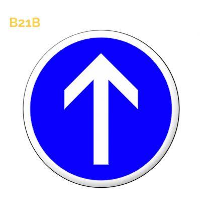 B21b - Panneau direction obligatoire à la prochaine intersection: tout droit Mysignalisation.com