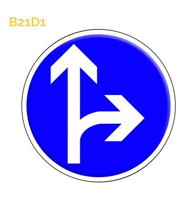B21d1 - Panneau direction obligatoire à la prochaine intersection: tout droit ou à droite Mysignalisation.com