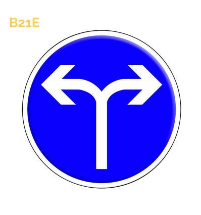 B21e - Panneau direction obligatoire à la prochaine intersection: à droite ou à gauche Mysignalisation.com